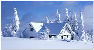 Сезонный календарь работ на декабрь