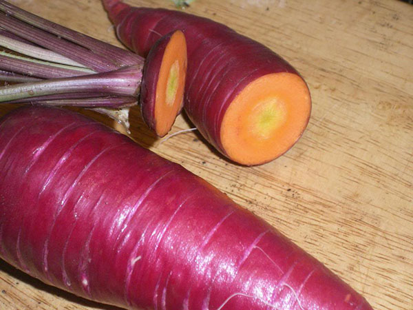 carrots Atomic Red