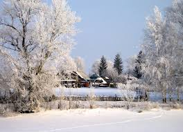 Сезонный календарь работ на январь