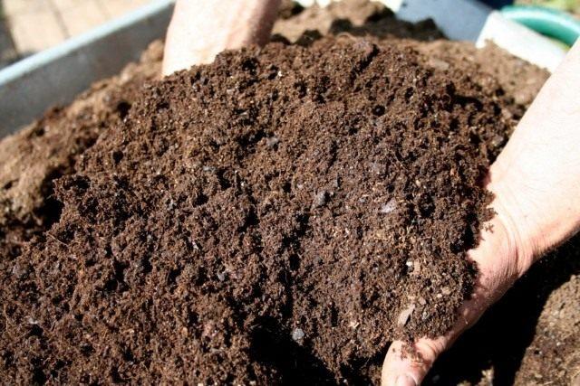 compostgot1