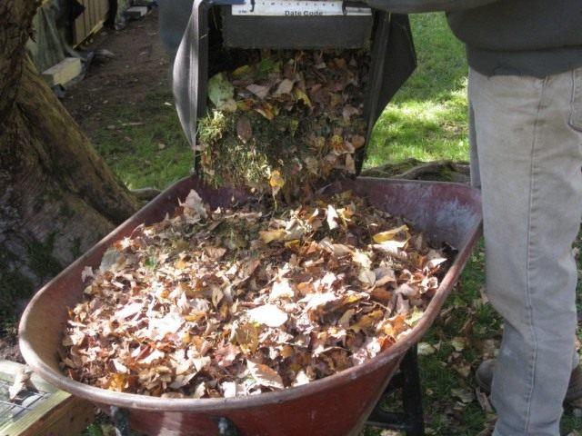 kompost2