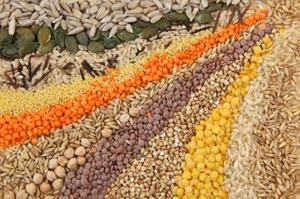 Январь, февраль - время покупать семена