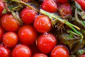 Соленые помидоры по старинному рецепту