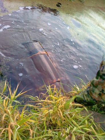 Огурцы холынские, соленые в бочках под водой